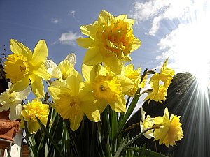 Frühlingssonne UV Belastung