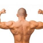Testosteron und Potenz steigern durch Sport