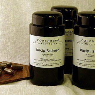 4er-Pack Kacip Fatimah Extrakt Kapseln 4x100 Stk